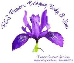 F.E.S. Flores deCalifornia
