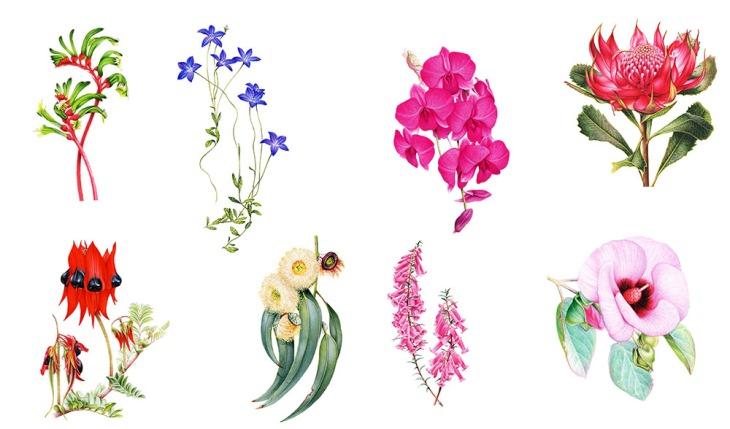 floral-emblems-all Australia