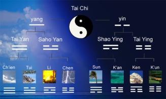 YIN / YANG - Elementos