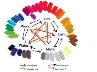 5 elementos MTC y colores