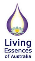 living-essences_m