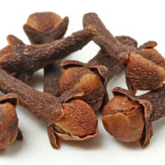 The-dried-flowerbuds-of-Eugenia-caryophyllata-known-as-cloves