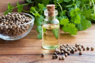 una-botella-de-aceite-esencial-del-coriandro