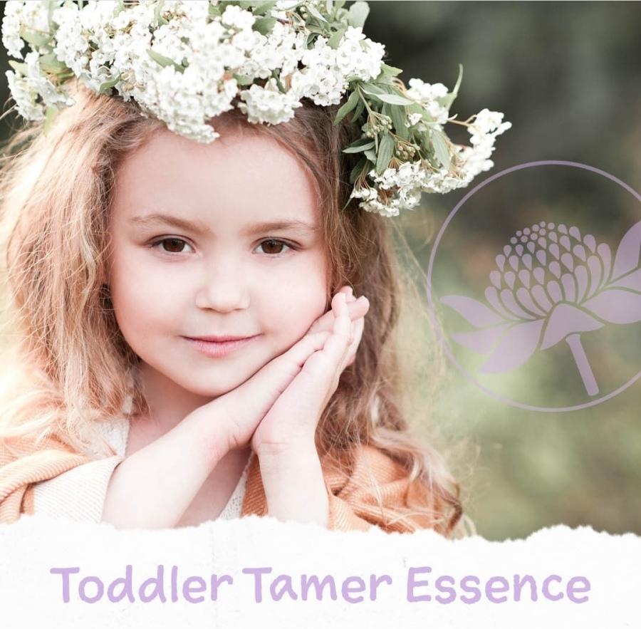 Toddler Tamer Essence (Domador deBebés)